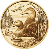 """Pamětní zlatá mince, 100EUR """"Divoká zvířata - Divoká kachna"""" proof"""